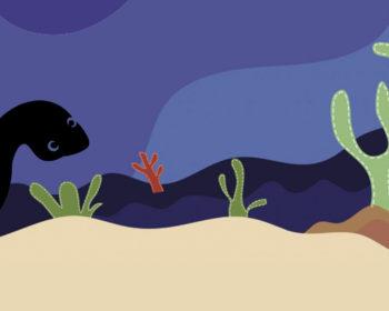 Mare dels Peixos